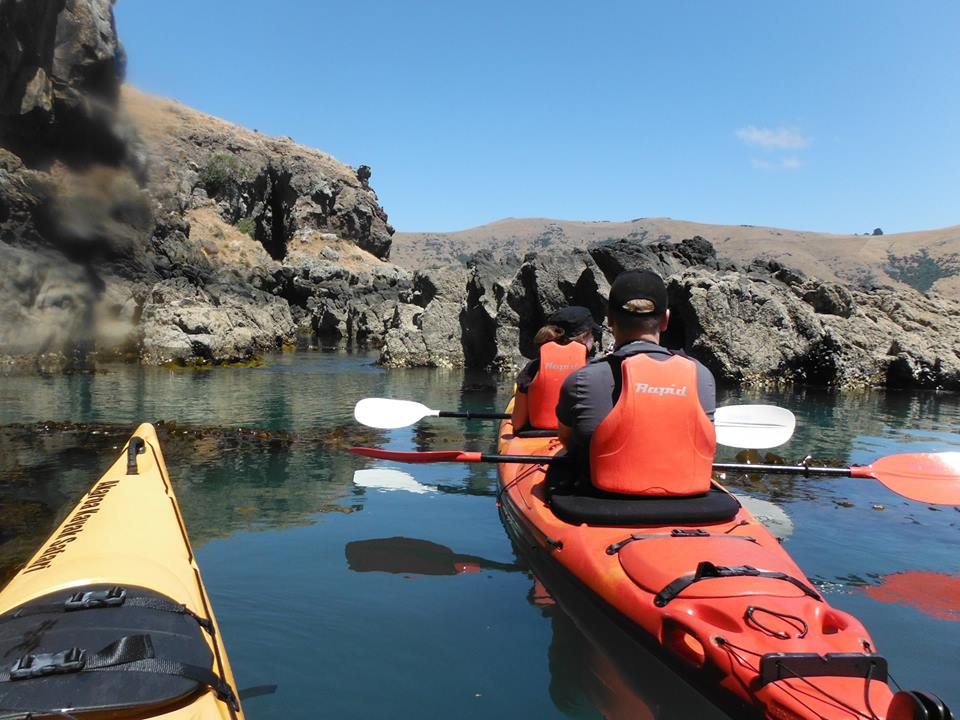 Kayak safaris in the Bays. Photo: Flickr / Kayak Safari