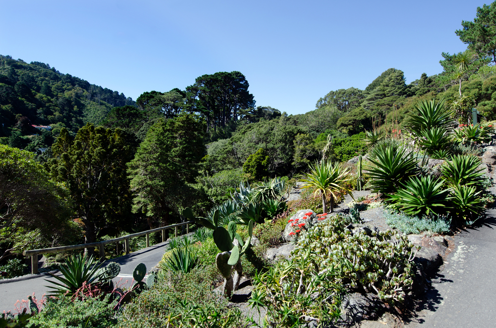 Most beautiful wedding venues in New Zealand - Skyscanner