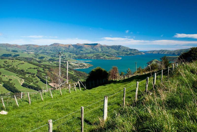 Banks Peninsula Track, Akaroa. Photo: Flickr / Jocelyn Kinghorn