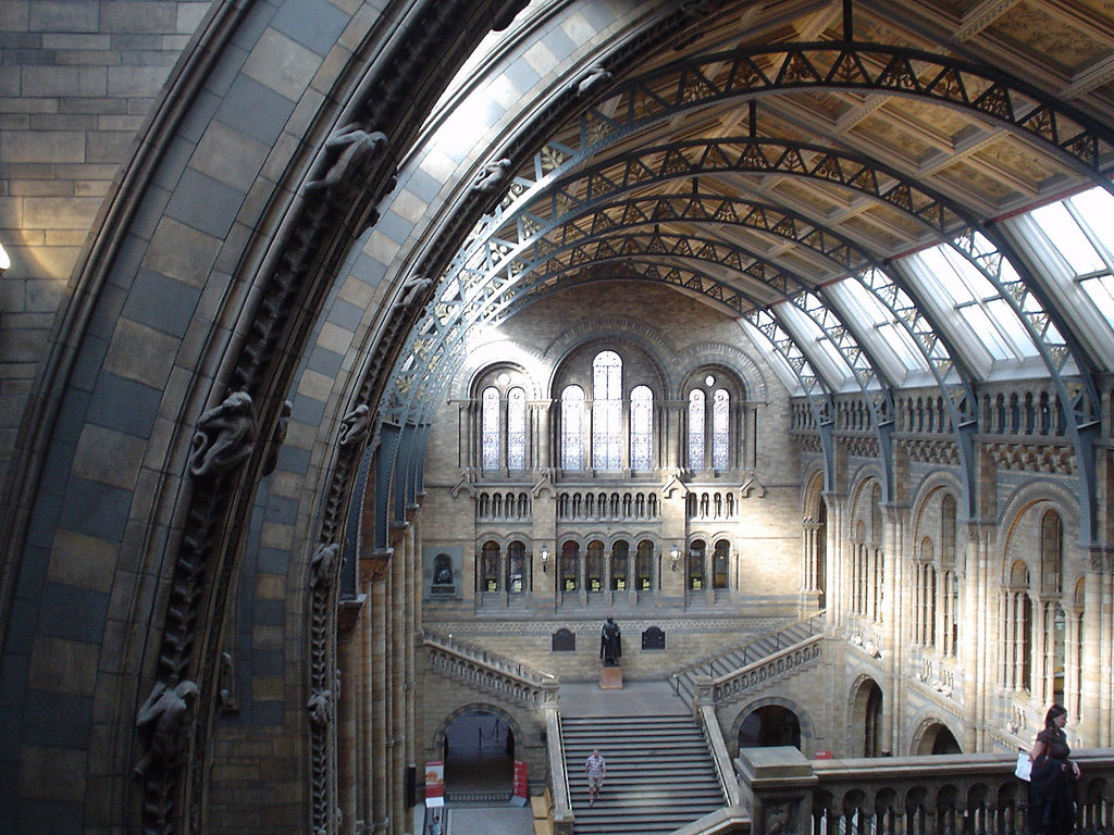 Hintz Hall, The Natural History Museum. Photo: Stephen Boisvert / Flickr